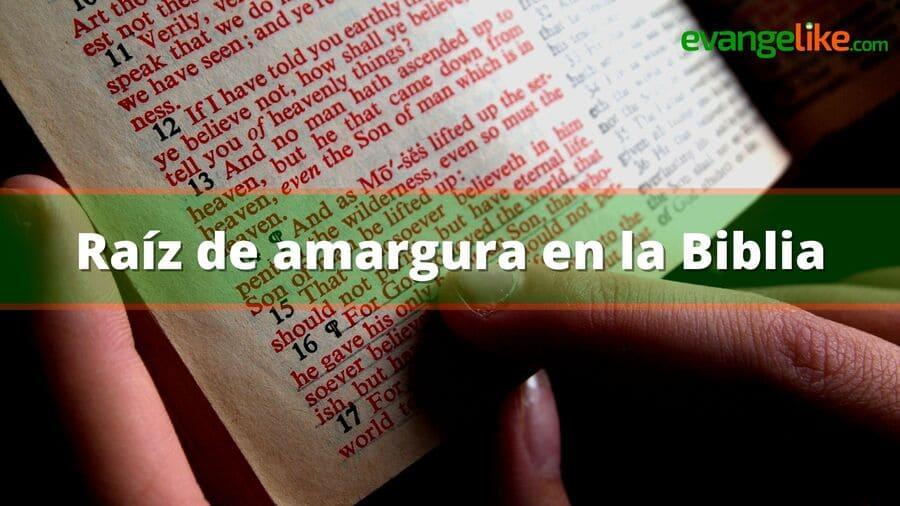 Raíz de amargura en la Biblia